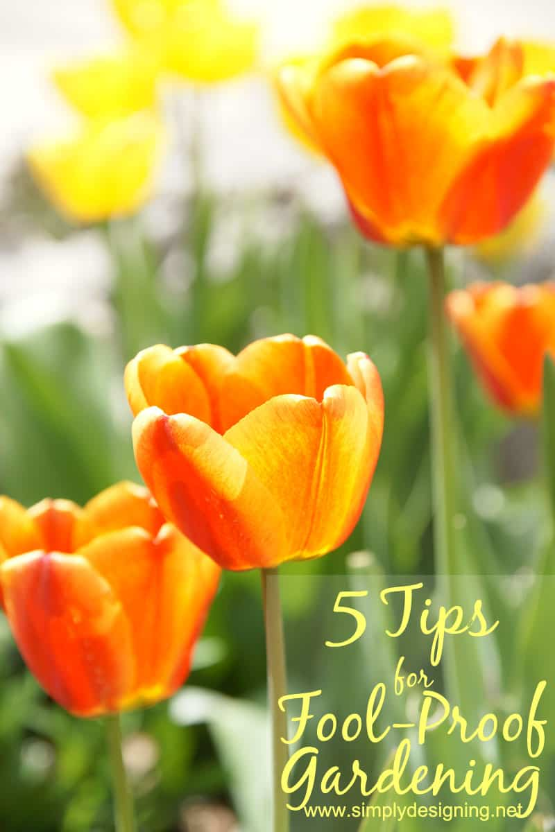 5 Tips for Fool-Proof Gardening | 5 simple tips to help your garden grow #gardening #spon #GroSomethingGreater