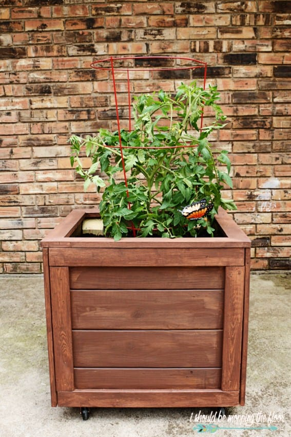 DIY PLANTER BOX WITH WHEELS TUTORIAL