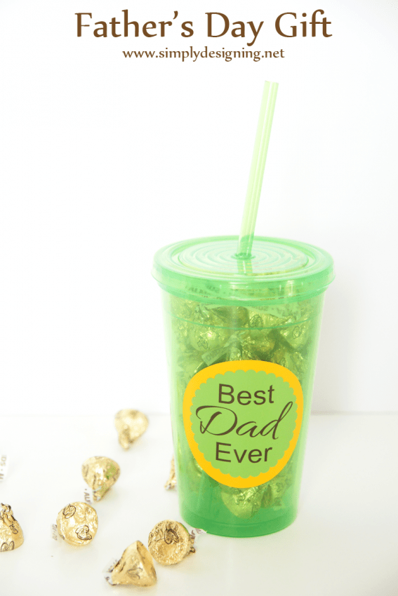 fathers day tumbler gift