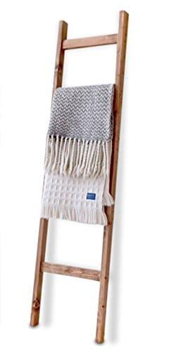 Handmade Decorative Ladder