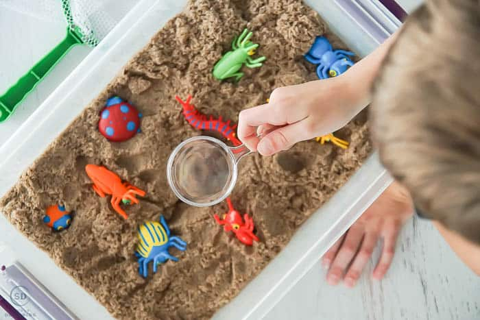 using bug catcher tools in sensory activities