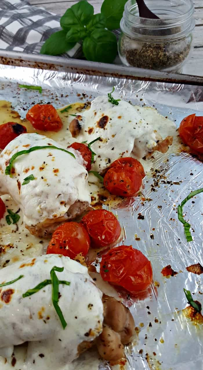 Finished Sheet Pan Caprese Chicken Dinner- chicken breasts with melted mozzarella on a tinfoil lined sheet pan with blisterd tomatoes sprinkled with olive oil and Italian seasoning and fresh basil.