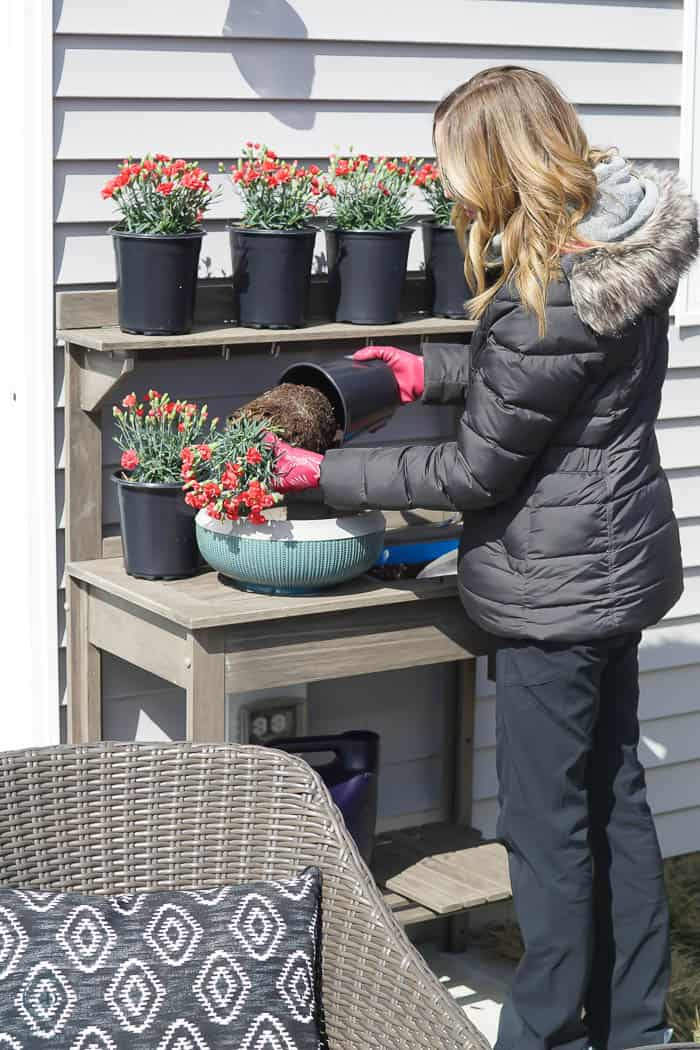 remove flowers from pot