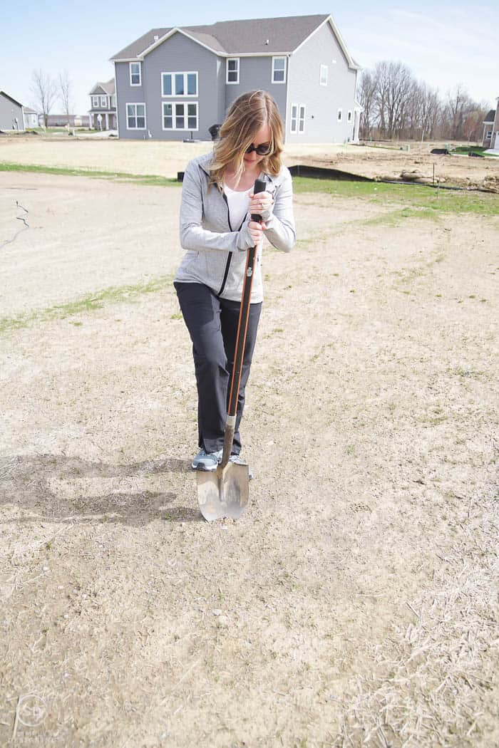 dig hole to plant a tree