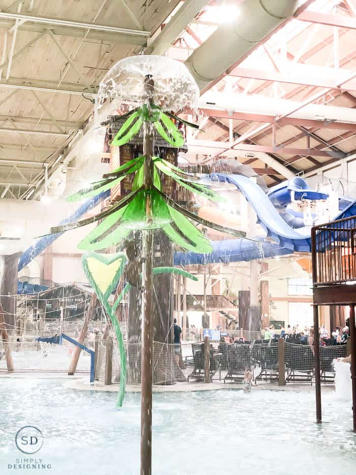 water park at Great Wolf Lodge
