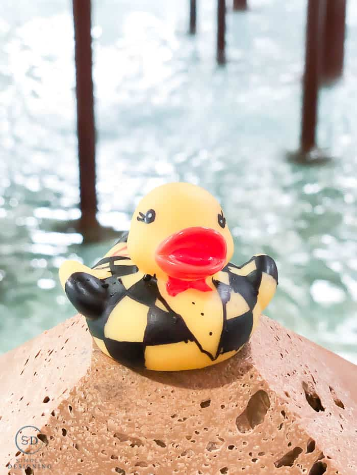 ducky 500 at great wolf lodge summer camp-in