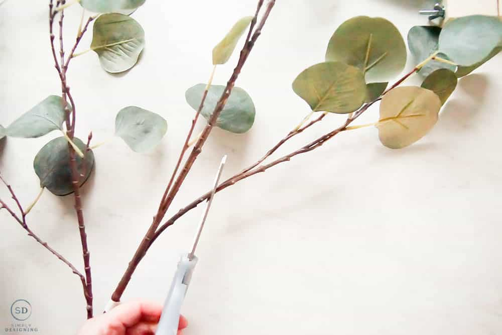cut eucalyptus picks